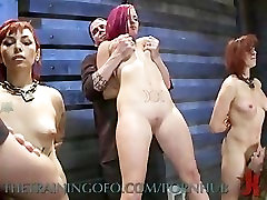 A Four Slave Training