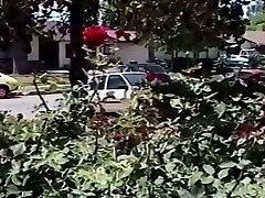 Amazing Adult free shauna sand fucking video ashian Wild