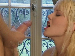 German Orgys - DBM Video