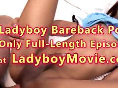 Young Ladyboy Pink Bareback Anal