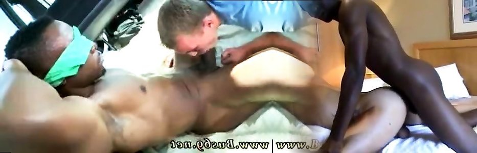 Kavekats spunky spunk of belushi